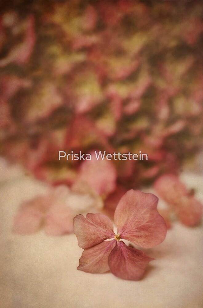 Pastosa by Priska Wettstein