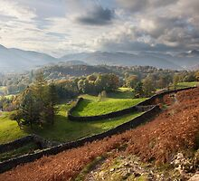The Langdales From Loughrigg by SteveMG
