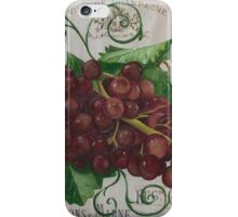 French Wine Red Grapes iPhone Case/Skin