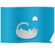 Playful Cat Poster