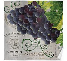 French Purple Grapes Poster