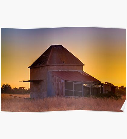 Chicory Kiln Sunset Poster