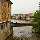 Bamberg, Germany 6 by Priscilla Turner