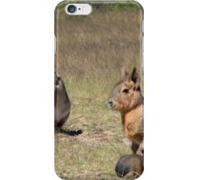 Fluffy Patgonian Cavy iPhone Case/Skin