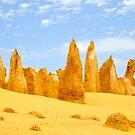 The Pinnacles by Karina  Cooper