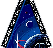 Expedition 45 Logo by Quatrosales