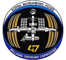 Expedition 47 Logo Photographic Print