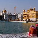THE FAITH by RakeshSyal