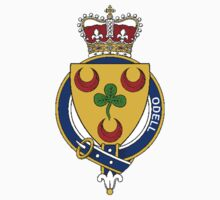 Coat of arms (family crest) for last-name or surname Odell (Ireland) . Heraldry banner for your name. by rita24