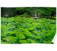 Sydney Botannical Garden Poster