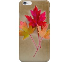 Fall Leaves on Grunge Background iPhone Case/Skin