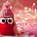 Winter owl in woolly hat - without frame by Zoë Power