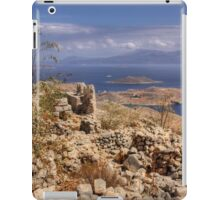 View from the Kastro iPad Case/Skin