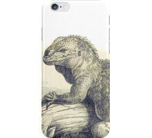 Iguana Vintage illustration iPhone Case/Skin