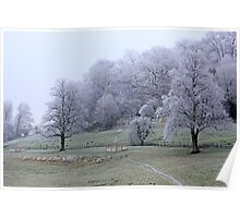 Dorset landscape blanketed with fog and frost  Poster