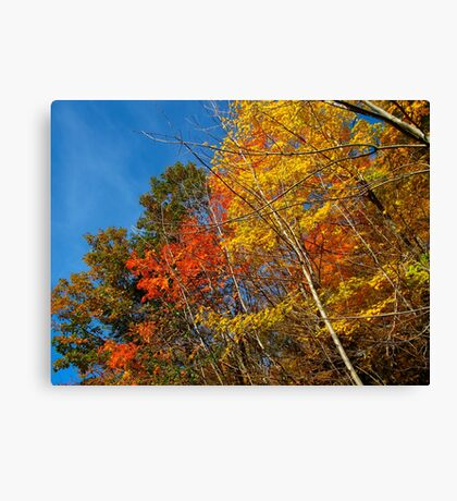 stacking colours Canvas Print