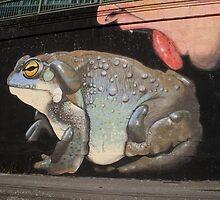Psychoactive toad by Mythos57