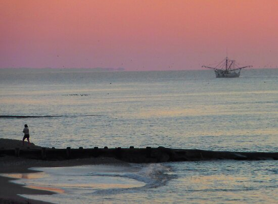 Edisto Morning by Tibby Steedly