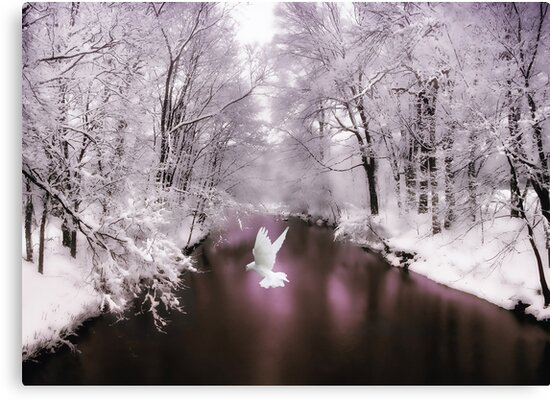 Peace on Earth (card) by Jessica Jenney