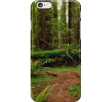 Forest Court iPhone Case/Skin