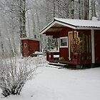 The little red cabin by tanmari