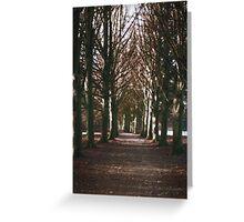 Winter Limbo Greeting Card