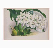 Iconagraphy of Orchids Iconographie des Orchidées Jean Jules Linden V3 1887 0174 Kids Tee