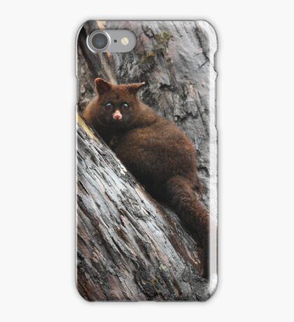 Brush Tail Possum iPhone Case/Skin