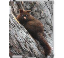 Brush Tail Possum iPad Case/Skin