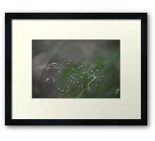 I Can't See. Framed Print