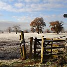 Winter Walk from Breachwood Green by Hertsman