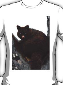 Brush Tail Possum T-Shirt