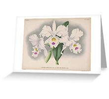 Iconagraphy of Orchids Iconographie des Orchidées Jean Jules Linden V15 1899 0214 Greeting Card