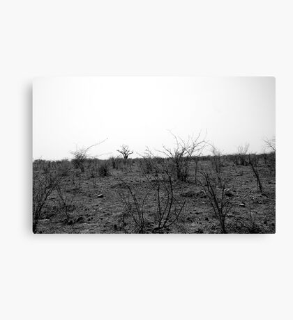 Desolate Canvas Print