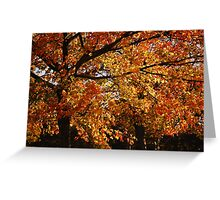 A lowther Autumn Greeting Card