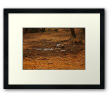 As REal As It Gets Framed Print