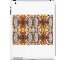 Carousel Horse - Kaleidoscope iPad Case/Skin