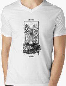 Waterfall T-Shirt Mens V-Neck T-Shirt