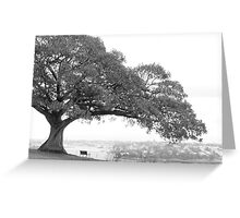 Observe and contemplate Greeting Card