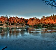 Lake of Frozen Dreams by Parnellpictures