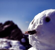 The Last Snowman - Beacon Hill by Rob Fenn
