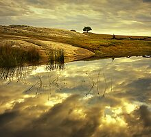 Cloud Reflection - Dog Rocks by Hans Kawitzki