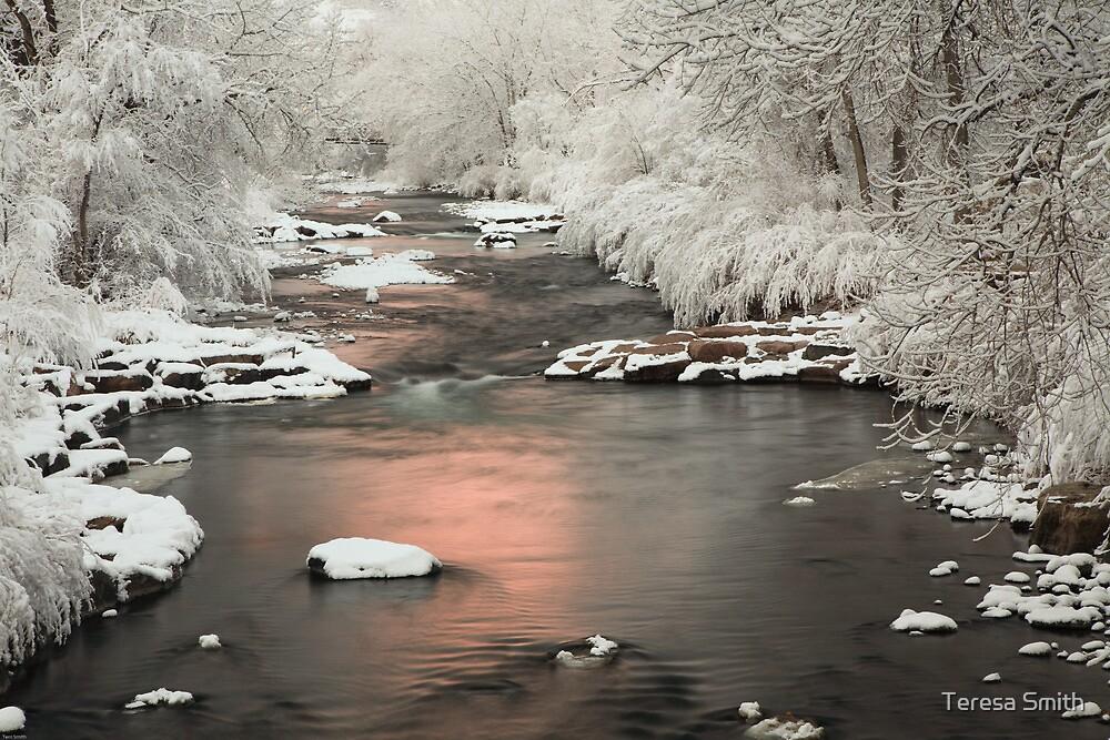 Clear Creek, Golden Colorado by Teresa Smith