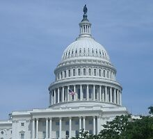 Capitol Dome by acmjeffrey