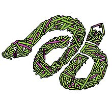 Rubberband Snake by Graphicsbyte