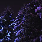 Snow world after midnight by Tarolino