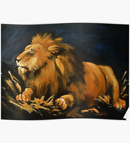 Contentment, the resting lion Poster