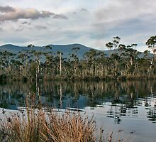 Along the Huon by jayneeldred