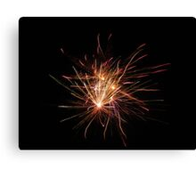 Neon Fireworks Canvas Print