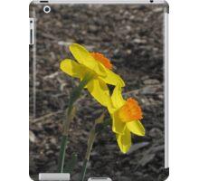 Golden Daffodils iPad Case/Skin
